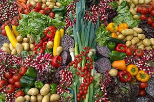 vegetables for a plant based diet
